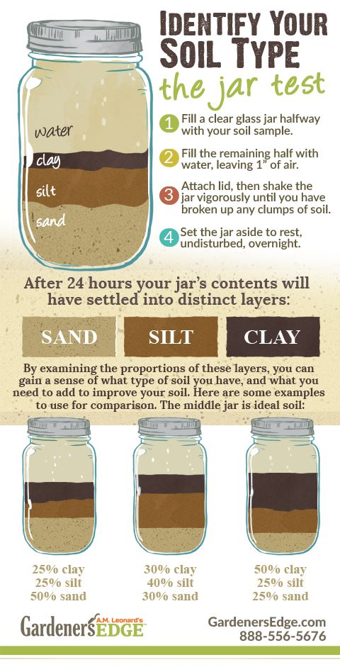Get to know your soil testing for nutrition ph and soil for Soil and its types